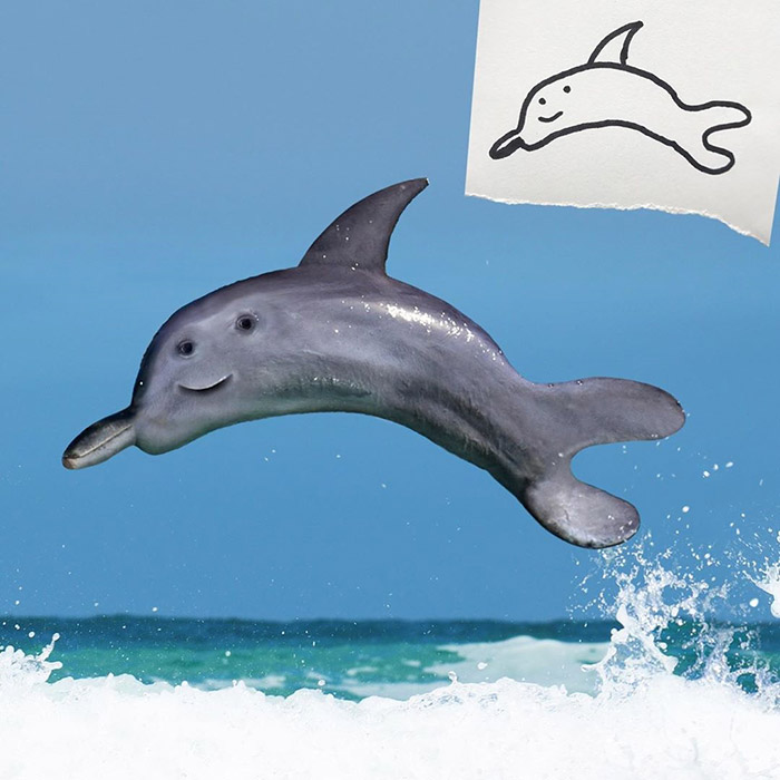 dolphin Photoshop kids drawings