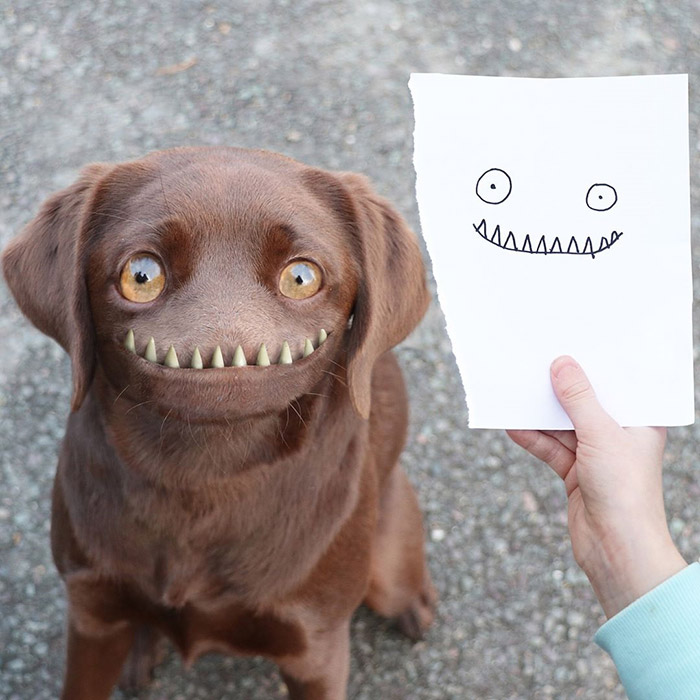 dog without nose Photoshop kids drawings
