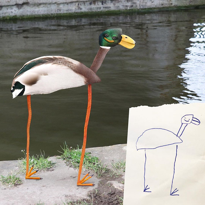funny face duck with long legs Photoshop