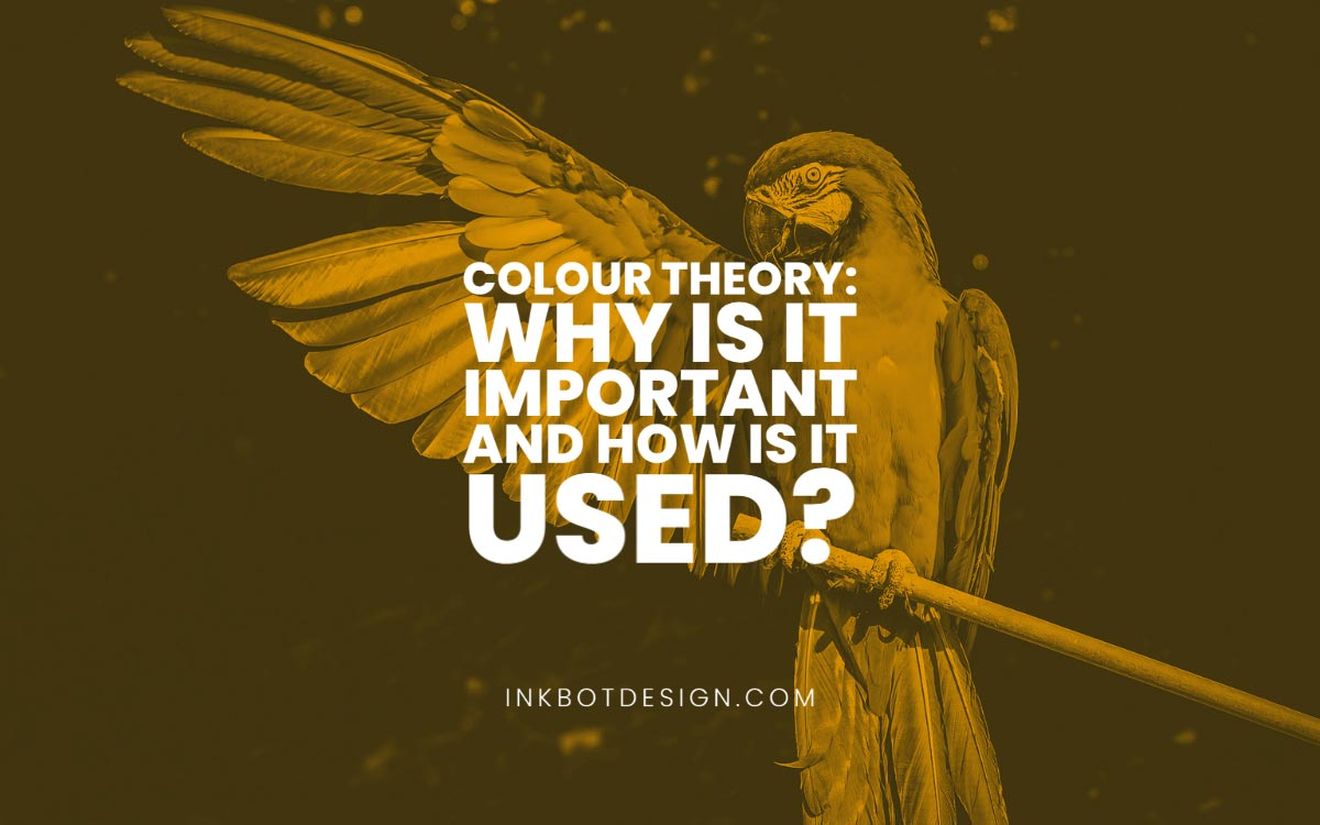 Colour Theory Why Is It Important Design